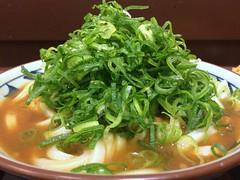 Udon from Marugame Seimen @ Roppongi (Fuyuhiko) Tags: from tokyo udon うどん roppongi 東京 カレー 六本木 marugame seimen 丸亀製麺