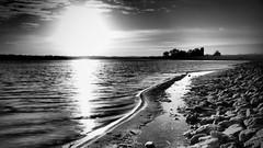Hambelton - Rutland Water (davepickettphotographer) Tags: uk landscape monotone stamford rutland oakham rutlandwater hambelton olympuscamera davepickettphotographer