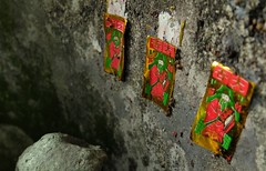 tiny shrine on Lantau island (whistle.and.run) Tags: china travel red macro travelling green asian island hongkong grey shrine asia gray fujifilm 中国 traveling 香港 supermacro 旅行 神社 ontheroad lantauisland lantau x10 macrophotography 岛 在路上 宏 大屿山 fujifilmx10