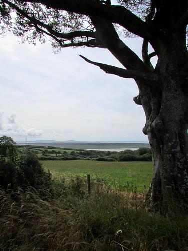 Near Llansaint