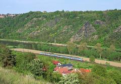 451.091 + 451.080 D (T_Mach) Tags: train river landscape czech railway valley bohemia vltava