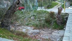 (Psinthos.Net) Tags: road morning bridge trees winter cold ice nature leaves car countryside rocks frost stones january treetrunk valley greens eucalypt planetrees treebranches fallenleaves rivulet treetrunks ruralroad     winterleaves  vrisi   psinthos                       psinthosvalley   vrisiarea torrentarea  vrisipsinthos