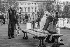 _DSC0698_Paris_11_15 (Saverio_Domanico) Tags: paris photosderue