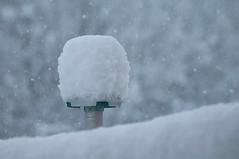 Er kam über Nacht ........... (eulenbilder) Tags: schnee winter weiss 172 februar erb pracht schneefall geschneit wintereinbruch flocken weissepracht spätaberheftig 25cmübernacht