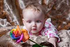 Ruby and the Rainbow Rose (Wayne Cappleman (Haywain Photography)) Tags: uk portrait baby rose photography rainbow wayne hampshire ruby farnborough haywain cappleman