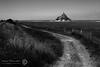 MONT-SAINT-MICHEL 42 (filippi antonio) Tags: blackandwhite france landscape normandie normandy francia paesaggio biancoenero montsaintmichel normandia préssalés pascoli