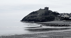 The water is testing (daisyglade) Tags: bw castle beach wales march seaside freezing criccieth madasaboxoffrogs youngmaninwater