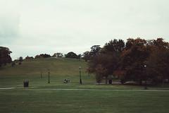 Primrose hill (Sofia Podestà) Tags: park travel autumn green london english grass landscape outside sofia hill autunno paesaggio primrose podestà zobeide photovogue sofiapodestà