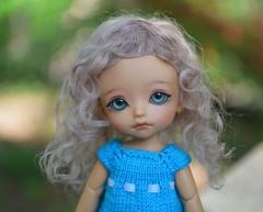dusty rose Lati White/ Pukipuki size wig (French Bulldog Works) Tags: blue portrait white hair doll wizard tan fair sp wig tiny mohair belle bjd limited beings jia puki latidoll lati tjia pukipuki fairbeings