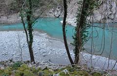 Aveto river (Flavio Calcagnini) Tags: blue trees panorama verde green water alberi river landscape turquoise fiume sassi rocce acqua muschio azzurro spiaggia paesaggio bosco turchese aveto
