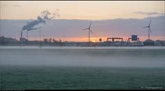 Here's the Sun (Peterbijkerk.eu Photography) Tags: mist fog sunrise nederland nl noordholland heiloo zonsopkomst peterbijkerkeu