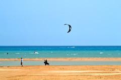 5_04_2016 (playkite) Tags: kite wind south egypt kiteboarding gouna kiting hurghada 2016