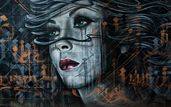 090416-0014 (roger hyland) Tags: collingwood mayo dest melbournegraffiti melbournestreetart artbydestroy