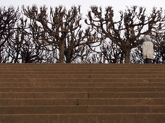 Starker Aufgang (Reimfee) Tags: germany dresden sachsen terassen aufgang treppenstufen brhlsche