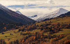 Autumn vs Winter.. (Alex Switzerland) Tags: autumn winter canon landscape eos schweiz switzerland herbst svizzera autunno engadin engadina 6d larix graubnden larici lrchen