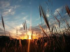 sky sun mobile clouds sunrise landscape paisaje lg... (Photo: Sr.Ivan on Flickr)