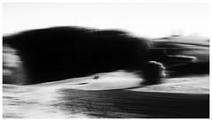 landscape (Velaeda) Tags: bw blur tree nature landscape