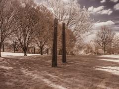 Hilly Fields Park. (blackwoodse6) Tags: park uk blue trees england sky white london canon ir standingstones lewisham bluesky infrared foilage southlondon stonecircles brockley southeastlondon londonparks hillyfieldspark infraredphotography se13 720nm se4 canong10