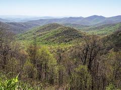 View of the Blue Ridge Mountains from Big Ridge Overlook - Blue Ridge Parkway (jimf_29605) Tags: northcarolina olympus zuiko blueridgeparkway e5 zd transylvaniacounty 1260mm bigridgeoverlook