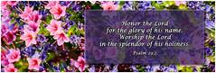 Always Remember (Calpastor) Tags: old david art church worship poetry poem day mothers psalms scripture verse psalm nlt testament
