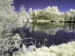 CravaMorozzo2016_IR_4250662 copia (stegdino) Tags: lake ir lago infrared refelection infrarosso crava morozzo cravamorozzo
