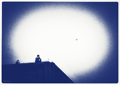 The Music Kept Playing (swanksalot) Tags: blue bird rooftop silhouette cyan strangers monotone toned blogthis photosketch