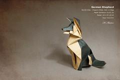 German Shepherd - Romn Daz (valitrenta) Tags: paper origami shepherd sandwich german papel seco seda papiroflexia doble romn daz