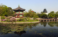 Hwangwonjeong Reflections (rogelio g arcangel) Tags: city travel summer reflections landscapes asia cityscapes korea seoul gwanghwamun asiatravel hwangwonjeong gyongbokgungpalace summer2016
