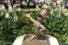 Donald Duck statue in Disneyland (GMLSKIS) Tags: donaldduck disneyland disney california amusementpark anaheim