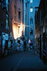 Morning City Light // Melbourne // Autumn (foxfins) Tags: morninglight kodak melbourne olympusxa2 ektar