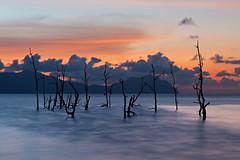 Sunset at Bako (Rob Kroenert) Tags: park blue trees sunset clouds river landscape dead boat high asia long exposure dusk jetty tide national mangrove sarawak malaysia borneo southeast malaysian bako bakonationalpark