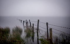 Wired (Robgreen13) Tags: uk longexposure mist water fog fence reeds wire cornwall reservoir posts barbed stopper liskeard ndfilters collifordlake