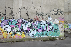 Skine - (Ruepestre) Tags: street streetart paris france art graffiti urbanexploration urbain graffitis skine