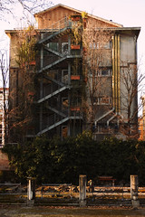 Scale (Marta Marcato) Tags: trees urban building tree scale stairs high stair edificio albero alto padova