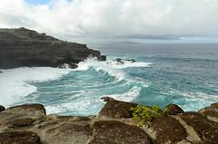 Wave action (seanexmachina) Tags: hawaii maui nakaleleblowhole