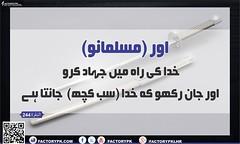 Surah Al-Baqrah Verse No 244 (faizme28) Tags: alquran albaqrah