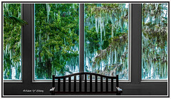 A Window with View    (Thank you, my friends, Adam!) Tags: art window lens photography nikon gallery peace photographer with view ngc fine peaceful excellent rest dslr