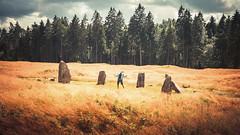 Opstad. Norway (Simo Vaikre) Tags: norway stone bronze circle site iron age burial megalith sarpsborg fredrikstad opstad
