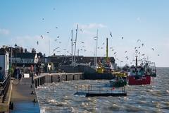 Choppy High Tide in Old Leigh (ho_hokus) Tags: winter england industry water river coast waterfront coastline fishingboats fishingboat riverthames essex leighonsea buoy hightide oldleigh fishingfleet 2016 choppy thamesestuary essexcoast fujix20 fujifilmx20