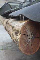 Log on a Tank (daniellenowak1201) Tags: wood up photography log tank close danielle poland professional ww2 rivera poznan