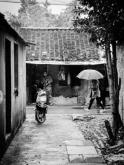 Country rain [Shanghai Streets] (AJ.L) Tags: china road street old roof woman man rain rural umbrella shanghai unique candid side small country chinese style farmland rainy housing moped tiling cottages distinct
