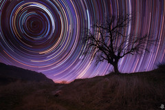 hurricane stars (Mahmood Alsawaf) Tags: longexposure nightphotography sky tree night canon stars photography landscapes flickr nightscape fineart iraq north lavender astrophotography        startrials totalphoto  mahmoodalsawaf