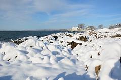On the rocks (Robert Dennis Photography) Tags: winter snow coast rocks maine kennebunkport stannschurch