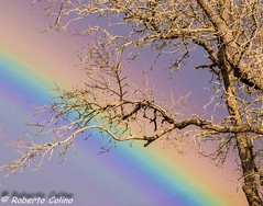 _DSC0027 (Roberto Colino) Tags: arcoiris rainbow bizkaia sopuerta robertocolino