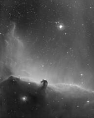 Horsehead nebula B33/IC434 (Mickut) Tags: orion ic434 horsehead darknebula b33 emissionnebula komakallio borensimon triussx814