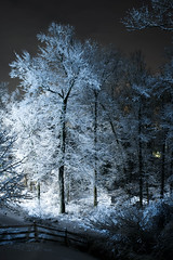 40.5/366 [Explored - 2/11/16] (Garen M.) Tags: nightphotography winter snow night pennsylvania nightscapes chestercounty phoenixville snowblanket freshsnowfall nikkor35mm14 nikond800