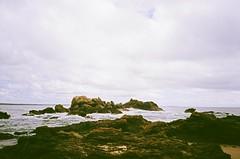 Port Macquarie (timothybrennan) Tags: summer film beach 35mm sydney olympus 35mmfilm nsw portmacquarie olympusxa3
