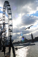 15th February - cold but sunny on the south bank (*superhoop*) Tags: sun bird thames londoneye bigben southbank flare hpad hpad2016 hpad150216