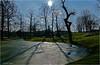 Light Catcher (Hindrik S) Tags: backlight tegenlicht tsjinljocht prinsentuin prinsetún winter pond fiver vijver sun sky loft sinne blue blauw bluesky shining skynt skine schijnen trees beammen bomen skaad shadow shade schaduw shapes vormen foarms silhouet silhouette kh2018 2016 hdr paintshoppro x8 sonyphotographing sony sonyalpha a57 α57 slta57 tamron 16300 tamronaf16300mmf3563dillvcpzdmacrob016 liwwadden ljouwert leeuwarden light ljocht licht green amount