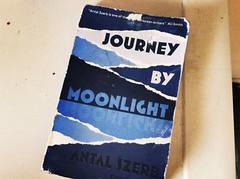 Journey by Moonlight (kadarmatyas) Tags: book literature journey moonlight shadesofblue bluecover szerb antalszerb szerbantal utassholdvilg